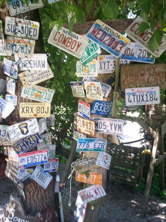 License Plates!