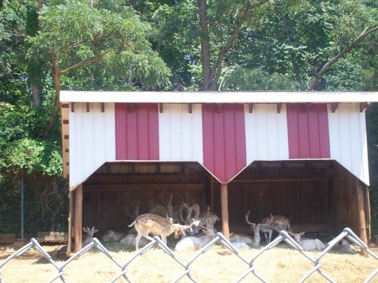 deer shed!