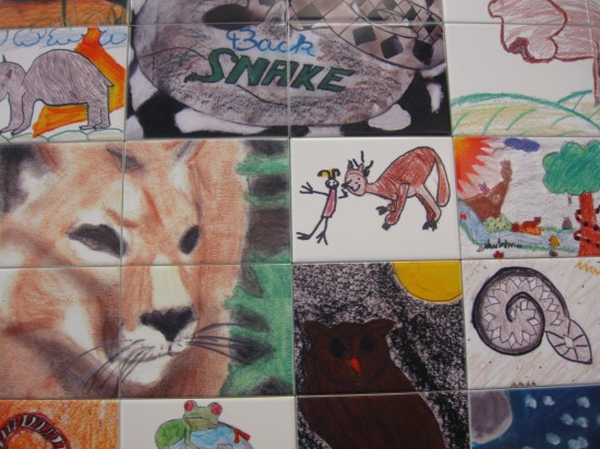 Animal Art!