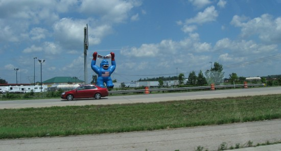 Blue Gorilla!