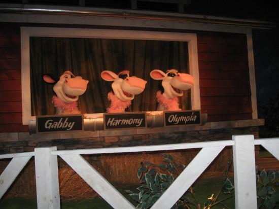 Singing Cows!