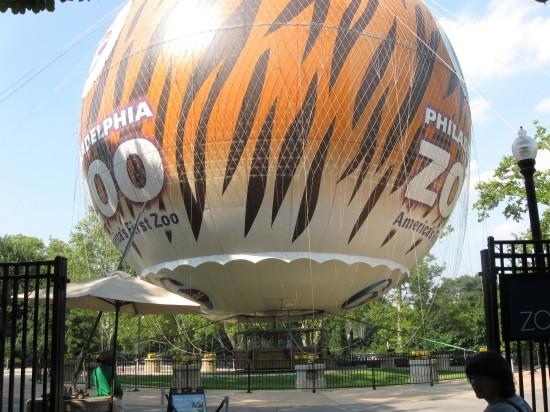 Philadelphia Zoo Balloon!