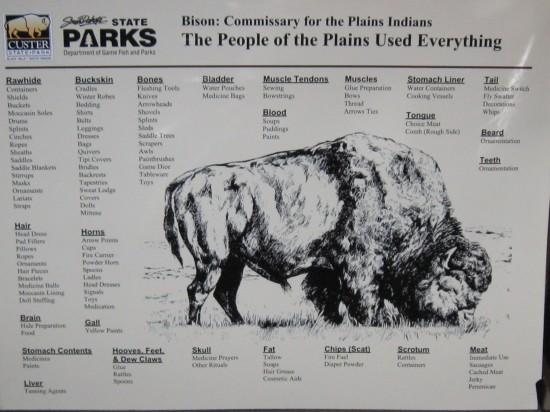 bison poster!