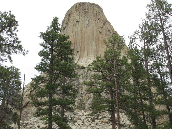 Devils Tower + trees!