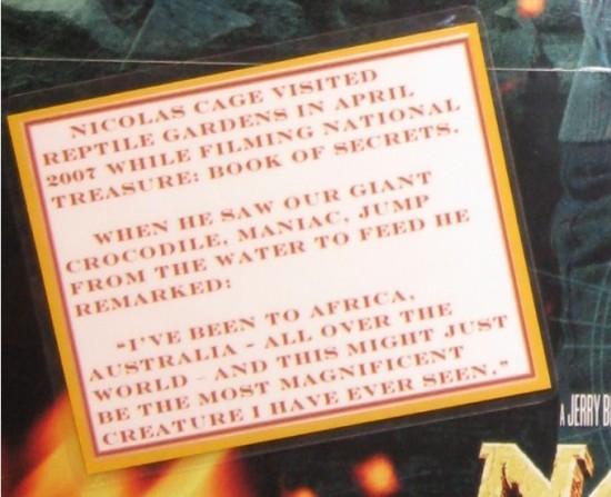 Nicolas Cage review!