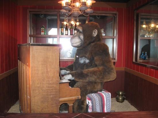 Piano Gorilla!