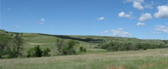Black Hills!
