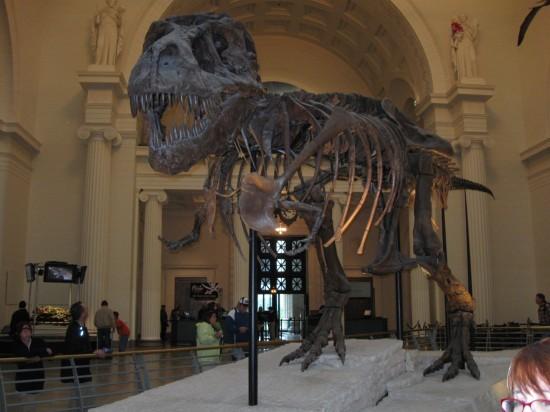 Sue the T-Rex!