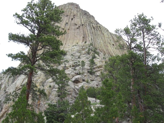 Devil's Tower!