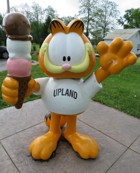 Garfield Upland!