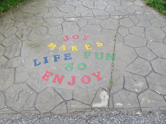 Joy Make Life Fun!