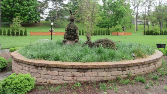 topiary bunnies!