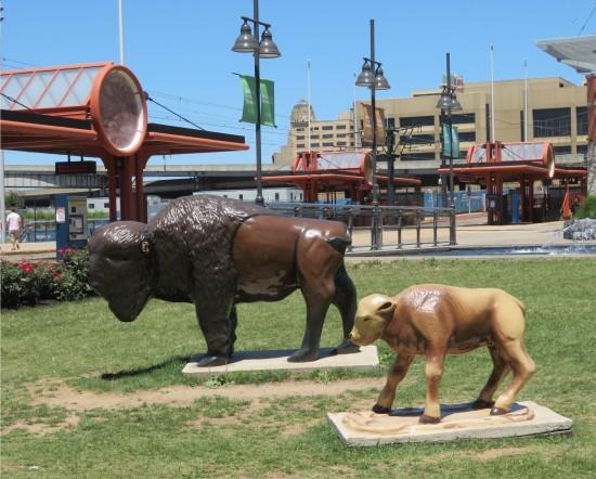 buffalo statues!