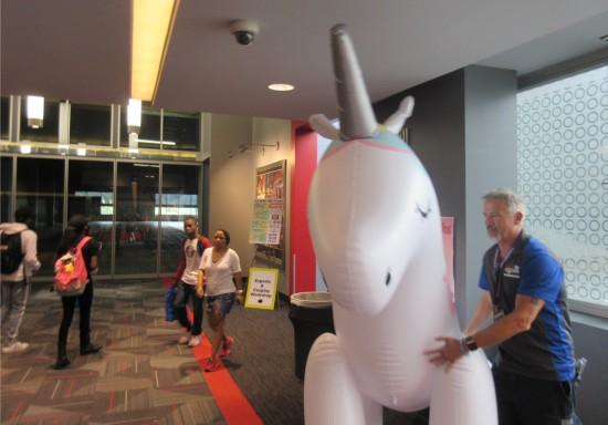 unicorn and volunteer!