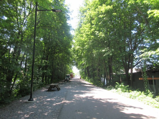 walkway trees!