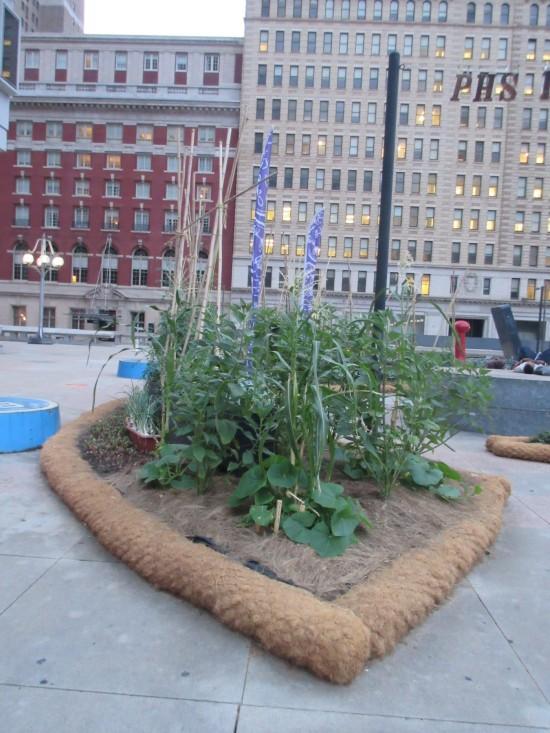 Philadelphia Horticultural Society!