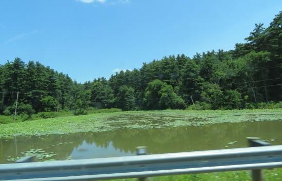 some Ohio river?