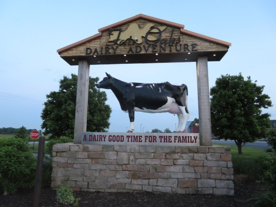 Fair Oaks Dairy Adventure!