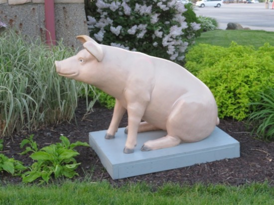 piggy statue!