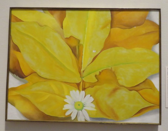 Yellow Hickory Leaves with Daisy!