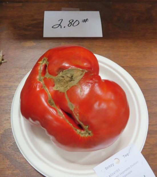 3-pound tomato!