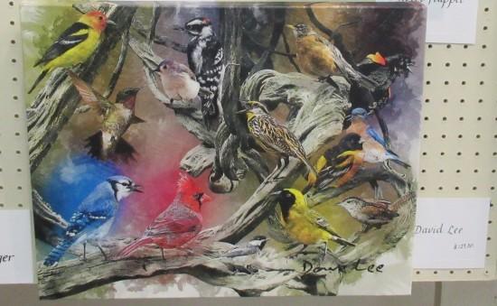 bird menagerie!