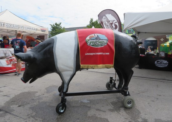 Shoup's Country black pig!