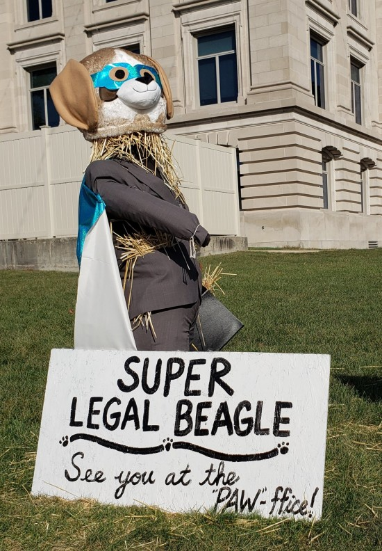Super Legal Beagle!