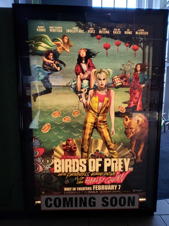 Birds of Prey!