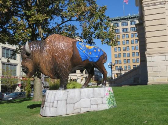 Tippecanoe Bicentennial Bison!