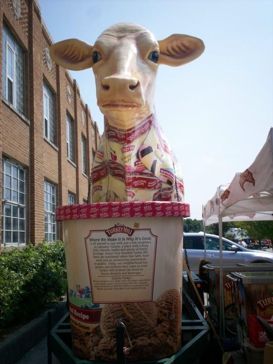 Turkey Hill Cow!