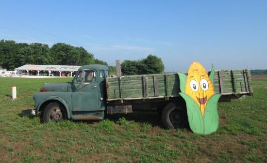 cartoon corn cob!