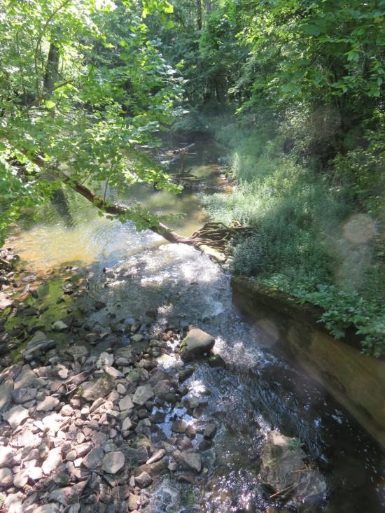 rocks in creek!