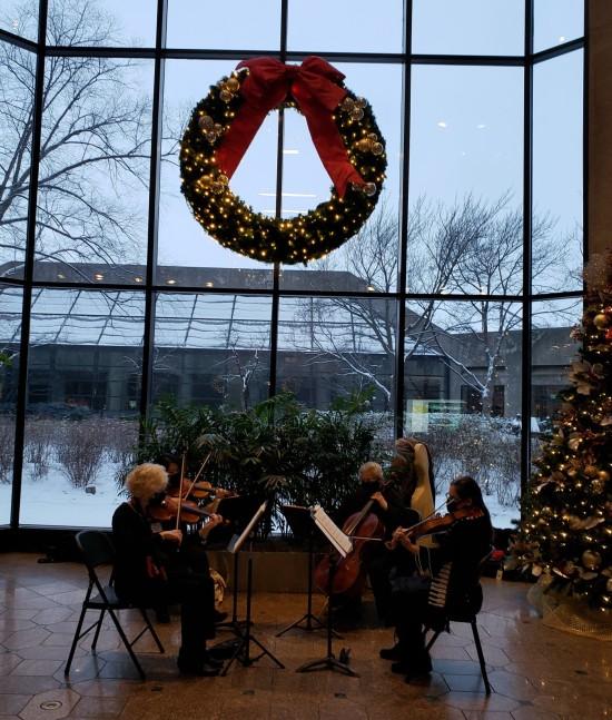 Christmas String Quartet!