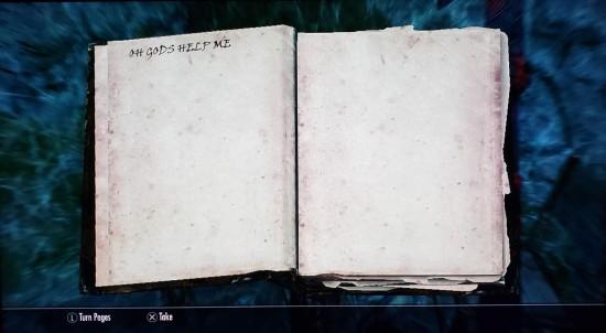 Skyrim OH GODS HELP ME Book.