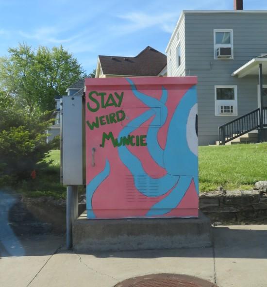 Stay Weird Muncie! light box.