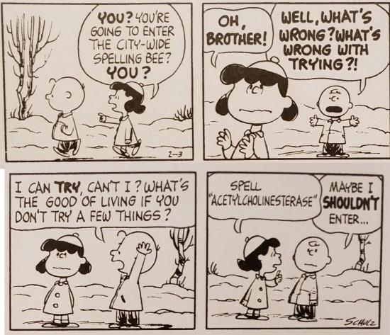 Charlie Brown in the spelling bee!