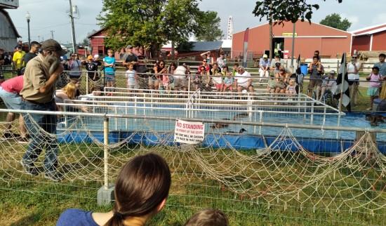 Duck racing track.