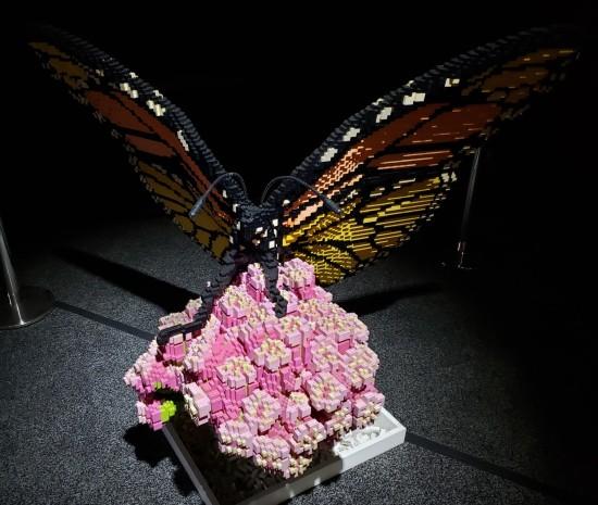Lego butterfly!