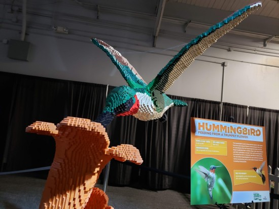 Lego hummingbird!